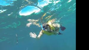 Snorkeling in Costa Maya Mexico
